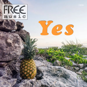 Free Music Muzyka bez opłat ZAiKS STOART ZPAV radio internetowe płyty prawo legalna bezpłatne odtwarzanie restauracji hotelu lokalu jazz chillout smooth instrumentalna